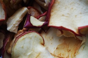 dried-apples-1049496_640