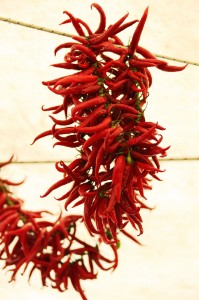 drying-chillies